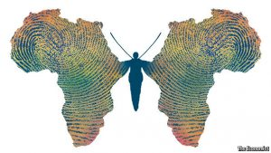 Africa Butterfly